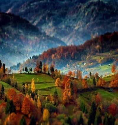 Oferte Individual holidays - Transylvania