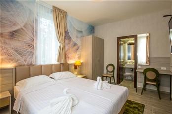 Hotel Florilor - Olanesti