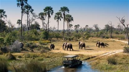 Kenya 2019 - Big Five safari si plaja la Oceanul Indian - Mombasa