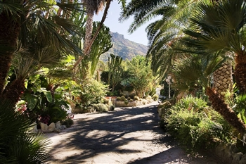 Park Hotel Terme Mediterraneo Ischia - Ischia